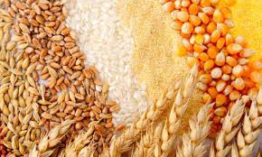 Cereals and Food and Grains
